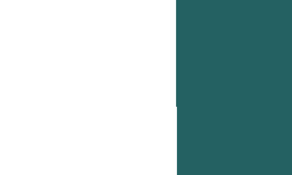 mediocirculo01.png