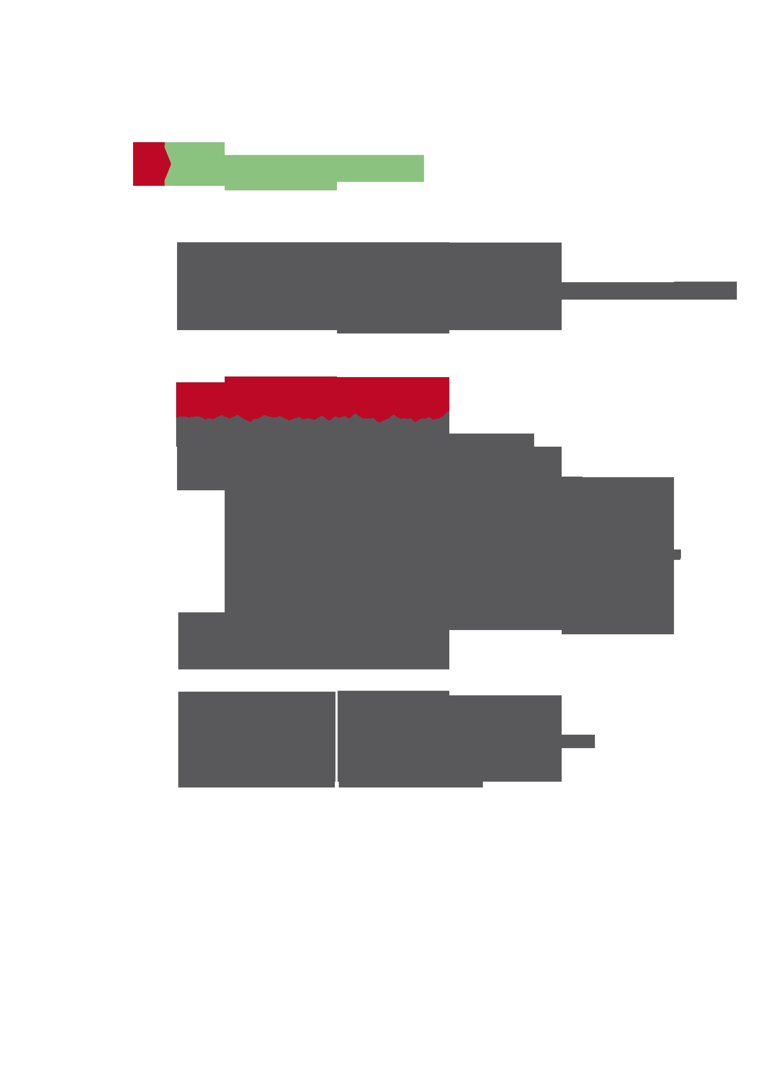 programa02.png