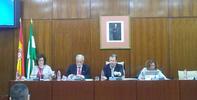 El Defensor del Pueblo andaluz eleva al Parlamento propuestas de mejora para la aplicación de la ley de Muerte digna