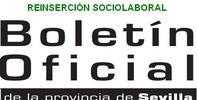 Convocatoria extraordinaria de subvenciones para la atención y la reinserción sociolaboral de colectivos vulnerables 2013, Ayuntamiento de Sevilla.