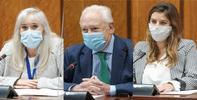 Conformidad a los Adjuntos al Defensor del Pueblo andaluz