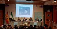 El Defensor del Pueblo andaluz subraya la importancia de los equipos psicosociales en los litigios de divorcios y custodia de menores