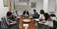 El Defensor del Pueblo andaluz aboga por un proceso ordenado y planificado de las energías renovables