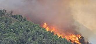 Que se actúe ante las causas del incendio de Lújar y se adopten medidas adicionales para aminorar el riesgo de incendio en la zona