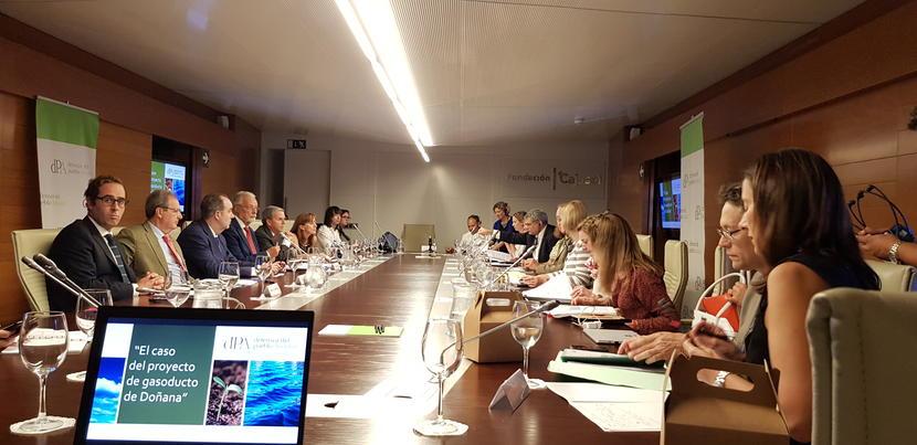 El Defensor del Pueblo andaluz traslada a eurodiputados las preocupaciones por el estado del acuífero y el gasoducto en Doñana