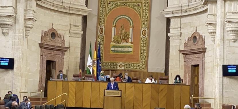 El Defensor del Pueblo andaluz insta al Pleno del Parlamento andaluz a no permitir que aumente la exclusión y la desigualdad social a causa de la COVID-19