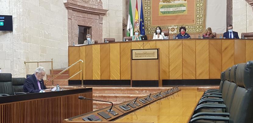 Más de 5.000 actuaciones en el Defensor del Pueblo andaluz a causa de la COVID-19