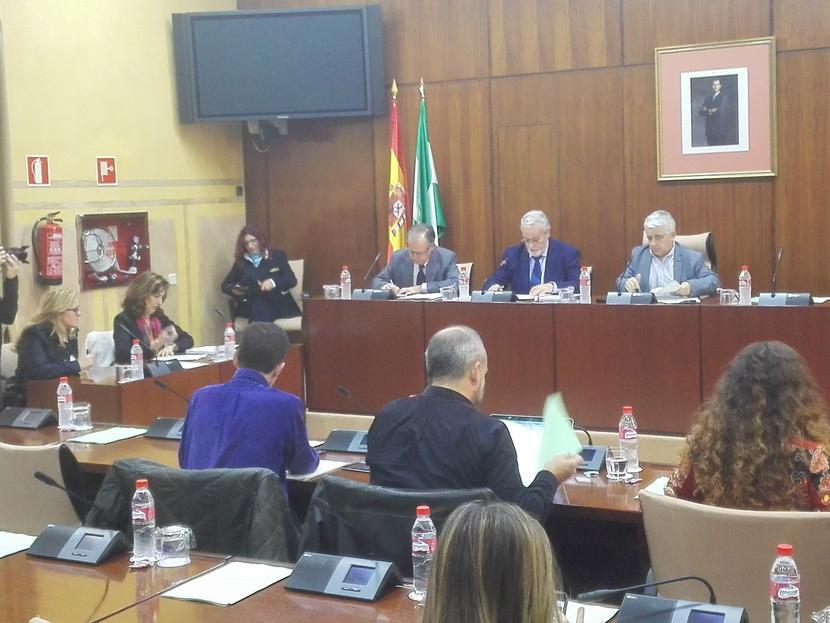 """Presentación del Informe Especial de """"Acoso Escolar y Ciberacoso"""" en comisión parlamentaria"""