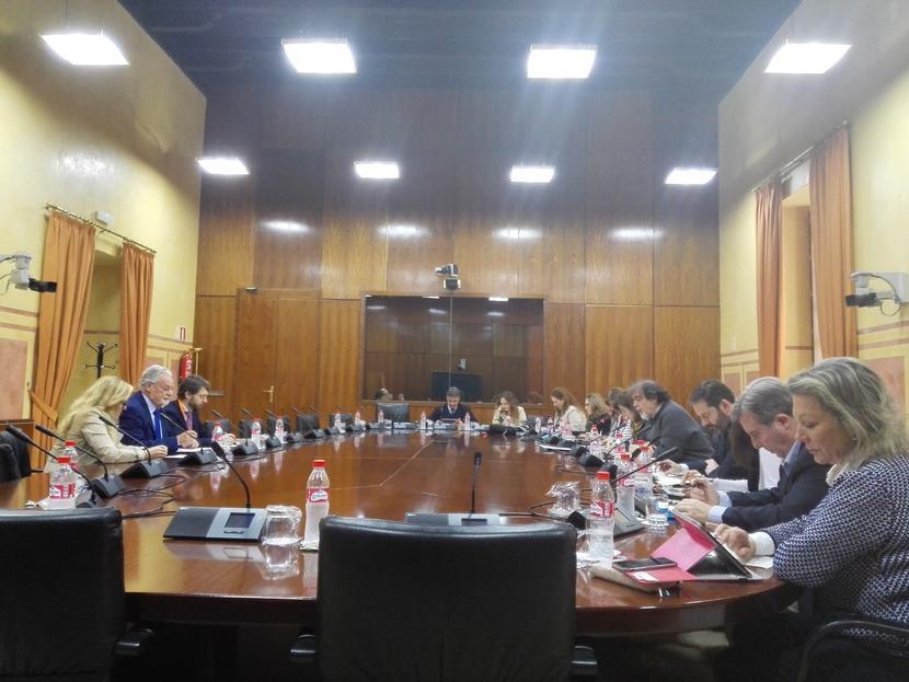 Intervención del dPA sobre el Proyecto de Ley de Participación Ciudadana en Andalucía