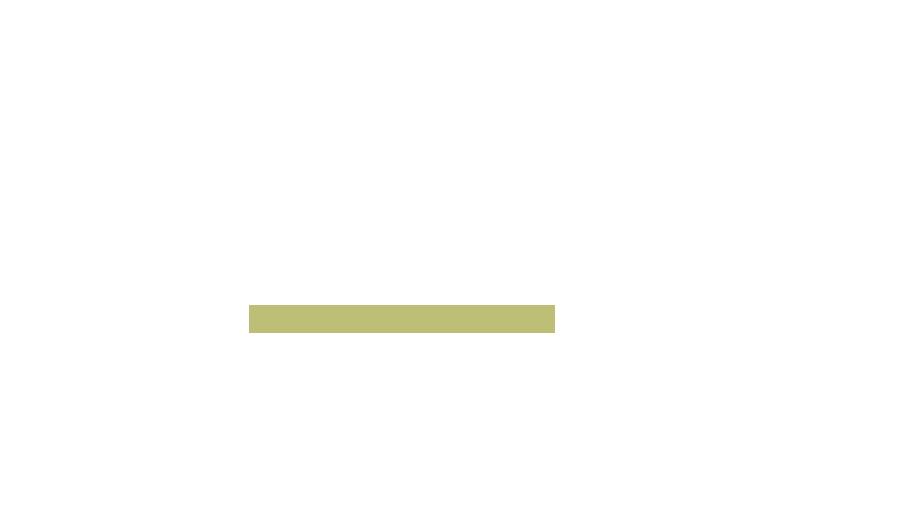 texto_identidad.png