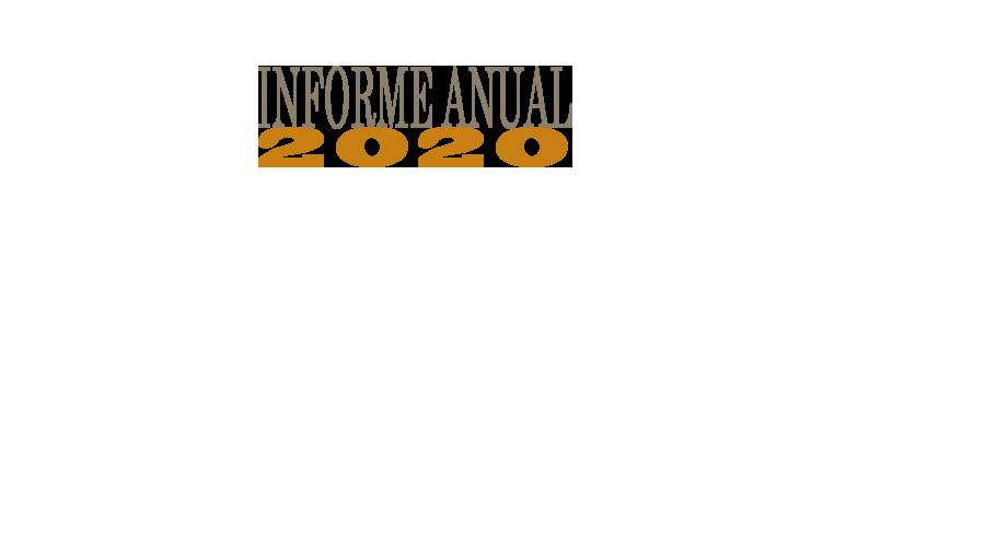 texto_informe_anual_2020.png
